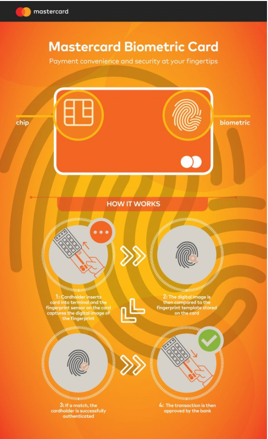 Инфографика про биометрическую карту