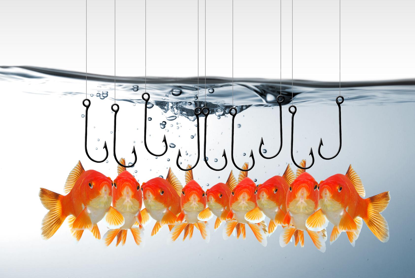 Рыбы на крючке